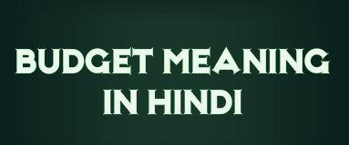 Budget Meaning in Hindi