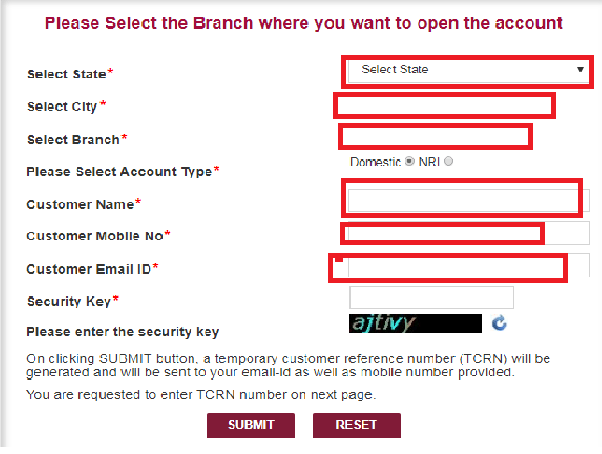punjab national bank online account opening